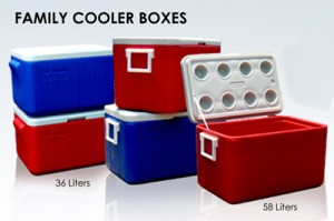 8419-michigan family-cooler-boxes